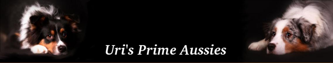Uris Prime Aussies